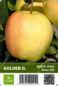 Jabloň GOLDEN DELICIOUS SMOOTHEE - kontejner