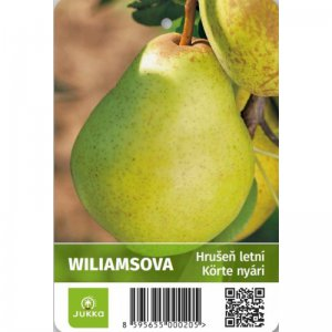 Hrušeň WILLIAMSOVA - kontejner