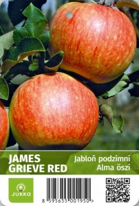 Jabloň JAMES GRIVE RED