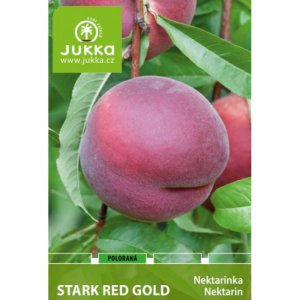 Nektarinka STARK RED GOLD - kontejner
