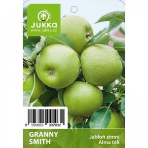 Jabloň GRANNY SMITH - kontejner